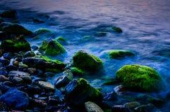καλυμμένοι βράχοι βρύου Στοκ φωτογραφίες με δικαίωμα ελεύθερης χρήσης
