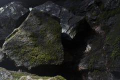καλυμμένος βράχος βρύου Στοκ εικόνες με δικαίωμα ελεύθερης χρήσης