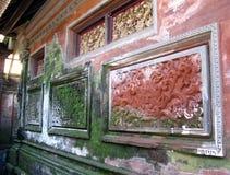 Καλυμμένος βρύο τοίχος Στοκ Εικόνες