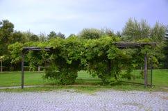 καλυμμένος με τη στάση λεωφορείου λουλουδιών Στοκ φωτογραφία με δικαίωμα ελεύθερης χρήσης