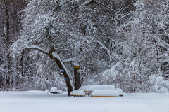καλυμμένος χειμώνας ιστορίας χιονιού σπιτιών νεράιδων δασικός ξύλινος Στοκ φωτογραφίες με δικαίωμα ελεύθερης χρήσης