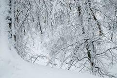 καλυμμένος χειμώνας ιστορίας χιονιού σπιτιών νεράιδων δασικός ξύλινος Στοκ Φωτογραφίες