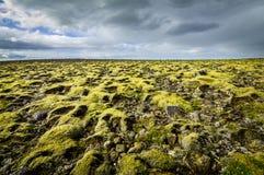 Καλυμμένο βρύο τοπίο με τη μακρινή άποψη στον ορίζοντα και τα σύννεφα Στοκ Φωτογραφίες