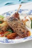 Καλυμμένο κύριο γεύμα παπιών Στοκ φωτογραφία με δικαίωμα ελεύθερης χρήσης