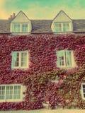 καλυμμένο φύλλο σπιτιών Στοκ φωτογραφίες με δικαίωμα ελεύθερης χρήσης