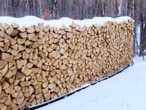 καλυμμένο χιόνι καυσόξυλου Στοκ Εικόνες