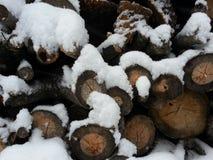 καλυμμένο χιόνι καυσόξυλου Στοκ Φωτογραφία
