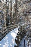 καλυμμένο χιόνι μονοπατιών στοκ εικόνα