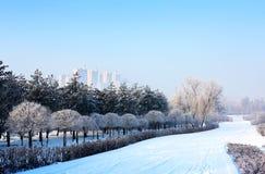 καλυμμένο χιόνι τοπίων Στοκ Εικόνες