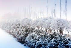 καλυμμένο χιόνι τοπίων Στοκ φωτογραφία με δικαίωμα ελεύθερης χρήσης