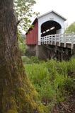 Καλυμμένο Currin εκλεκτής ποιότητας οδικό ταξίδι κοιλάδων ποταμών υπόλοιπου κόσμου γεφυρών Στοκ φωτογραφία με δικαίωμα ελεύθερης χρήσης