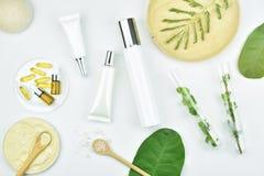 Καλλυντικά εμπορευματοκιβώτια μπουκαλιών με τα πράσινα βοτανικά φύλλα, κενή ετικέτα Στοκ φωτογραφία με δικαίωμα ελεύθερης χρήσης