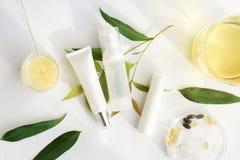 Καλλυντικά εμπορευματοκιβώτια μπουκαλιών με τα πράσινα βοτανικά φύλλα, κενή ετικέτα Στοκ Εικόνες