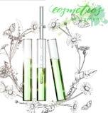καλλυντικά φυσικά άρωμα Εκχύλισμα λουλουδιών τεχνητό Καλλυντικό πρότυπο αγγελιών, μπουκάλι σταγονίδιων γυαλιού με το πετρέλαιο ου διανυσματική απεικόνιση