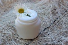 Καλλυντική κρέμα με το άσπρο camomile λουλούδι Στοκ εικόνα με δικαίωμα ελεύθερης χρήσης