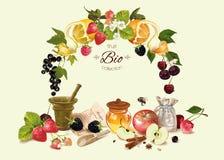 Καλλυντικό φρούτων και μούρων compositoin Στοκ εικόνες με δικαίωμα ελεύθερης χρήσης
