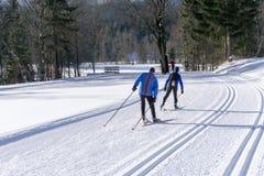 Καλλωπισμένα ίχνη σκι για διαγώνιο να κάνει σκι χωρών Στοκ Φωτογραφίες