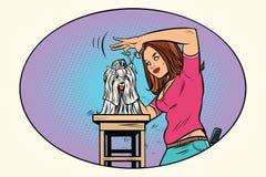 Καλλωπισμός σκυλιών, κατοικίδιο ζώο ψαλίδων κουρέων απεικόνιση αποθεμάτων