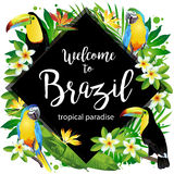 Καλωσορίστε στη Βραζιλία! Διανυσματική απεικόνιση των τροπικών πουλιών Στοκ εικόνα με δικαίωμα ελεύθερης χρήσης