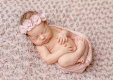Καλός νεογέννητος κατσαρωμένος επάνω κοιμισμένος, τυλιγμένος στη ρόδινη πάνα στοκ φωτογραφία με δικαίωμα ελεύθερης χρήσης