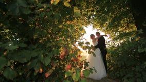 Καλός το αγκάλιασμα νυφών και νεόνυμφων και μοιράζεται ένα ρομαντικό φιλί στο καταπληκτικό πράσινο πάρκο στο ηλιοβασίλεμα απόθεμα βίντεο