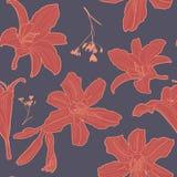 Καλό εκλεκτής ποιότητας floral σχέδιο με τον κρίνο Στοκ Εικόνα