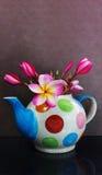 Καλό plumeria ή frangipani λουλουδιών φανταχτερό teapot Στοκ Εικόνες