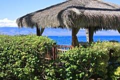 Καλύβα ωκεάνιο Maui στεγών χλόης Στοκ Εικόνες