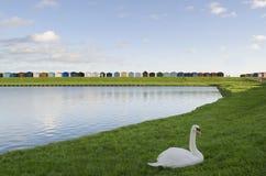 Καλύβες βρετανικών παραλιών - Essex στοκ φωτογραφία