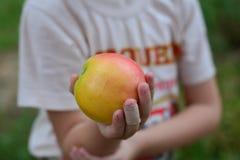 Καλύτερη βιταμίνη της Apple για την υγεία Στοκ Φωτογραφίες