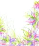 καλύτερο λουλούδι ανα&s Στοκ Φωτογραφία