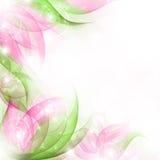 καλύτερο λουλούδι ανα&s Στοκ φωτογραφία με δικαίωμα ελεύθερης χρήσης