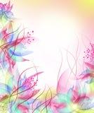 καλύτερο λουλούδι ανα&s Στοκ εικόνες με δικαίωμα ελεύθερης χρήσης