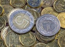 Καλύτερο πολωνικό νόμισμα Στοκ εικόνα με δικαίωμα ελεύθερης χρήσης