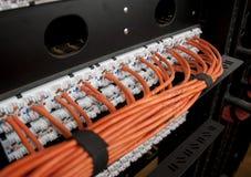 Καλώδια δικτύων Στοκ φωτογραφία με δικαίωμα ελεύθερης χρήσης