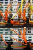 Καλώδια οπτικών ινών που συνδέονται με rooter Στοκ εικόνα με δικαίωμα ελεύθερης χρήσης