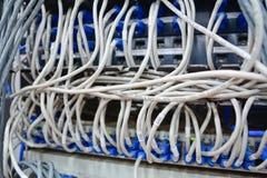 Καλώδια Ethernet που συνδέονται με τον κεντρικό υπολογιστή Διαδικτύου υπολογιστών Στοκ εικόνα με δικαίωμα ελεύθερης χρήσης