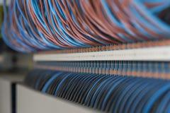 Καλώδια Ethernet που συνδέονται με τον υπολογιστή Διαδίκτυο Στοκ Φωτογραφίες