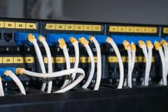 Καλώδια Ethernet που συνδέονται με τους κεντρικούς υπολογιστές Στοκ φωτογραφίες με δικαίωμα ελεύθερης χρήσης