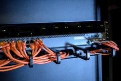 Καλώδια Ethernet του διακόπτη Διαδικτύου Στοκ Φωτογραφίες