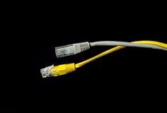 Καλώδιο δικτύων του τοπικού LAN με το συνδετήρα rj-45 Στοκ Εικόνες