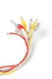 Καλώδιο δικτύων του τοπικού LAN με το συνδετήρα rj-45 Στοκ φωτογραφίες με δικαίωμα ελεύθερης χρήσης