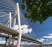 Καλώδιο-μένοντη γέφυρα Στοκ φωτογραφίες με δικαίωμα ελεύθερης χρήσης