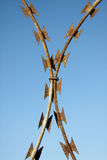 Καλώδιο ξυραφιών Στοκ εικόνες με δικαίωμα ελεύθερης χρήσης