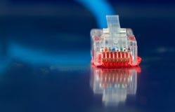 Καλώδιο Ethernet δικτύων σε μια μπλε κινηματογράφηση σε πρώτο πλάνο υποβάθρου Στοκ Εικόνες
