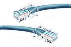 Καλώδιο Ethernet που απομονώνεται Στοκ Εικόνες