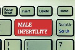 Κείμενο γραφής που γράφει την αρσενική στειρότητα Έννοια που σημαίνει την ανικανότητα ενός αρσενικού να προκαλέσει την εγκυμοσύνη στοκ φωτογραφία με δικαίωμα ελεύθερης χρήσης