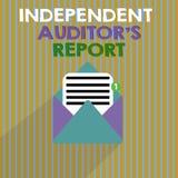 Κείμενο γραψίματος λέξης ανεξάρτητη έκθεση IS ελεγκτών s Η επιχειρησιακή έννοια για αναλύει τη λογιστική και τις οικονομικές πρακ ελεύθερη απεικόνιση δικαιώματος
