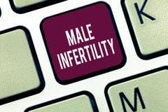 Κείμενο γραψίματος λέξης αρσενική στειρότητα Επιχειρησιακή έννοια για την ανικανότητα ενός αρσενικού να προκαλέσει την εγκυμοσύνη στοκ εικόνες με δικαίωμα ελεύθερης χρήσης