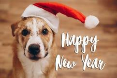Κείμενο καλής χρονιάς, εποχιακό σημάδι καρτών χαιρετισμών σκυλί σε Santa Στοκ Εικόνες